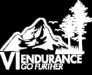 VI Endurance